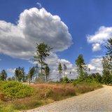 Wanderweg im Fichtelgebirge - ©Ferienregion Fichtelgebirge