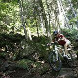 Mountainbiker im Schwarzwald - ©Christoph Eberle/STG