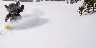 Where's the Snow this Weekend: West Coast Report 4/9/14 - ©Mammoth Mountain