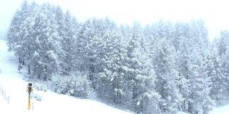 Závan zimy v Tirolsku - 40 cm čerstvého snehu na Stubai aj Pitztali - ©facebook Carosello 3000 Ski Area Livigno