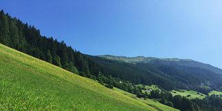 Der Bergmähderweg im Zillertal: Blütenpracht und Kulturlandschaft treffen auf uralte Tradition - ©Elisabeth Kroell