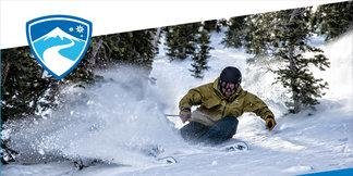 Men's Powder Ski Buyers' Guide 2016/2017 - ©Liam Doran