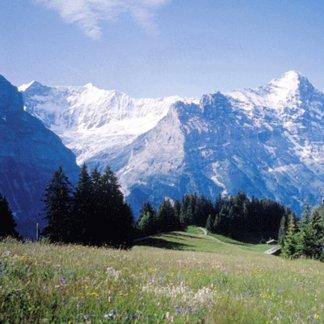 Gondel Grindelwald