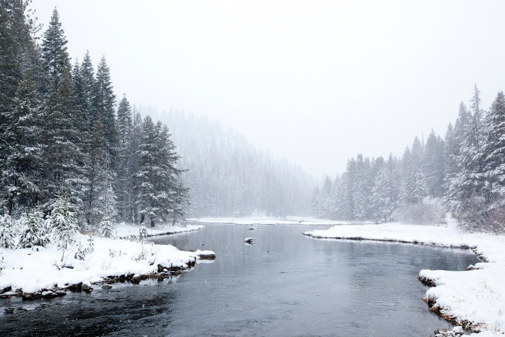 Lake Tahoe is fed from over 60 tributaries, but The Truckee River is the only outlet. Photo by Sasha Coben
