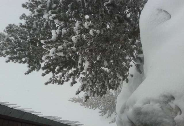 snowing!!!!