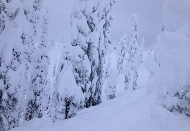 great fun after 37cm of pow.