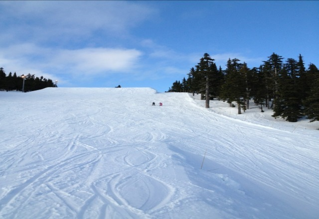 perfect spring skiing. lots of snow too