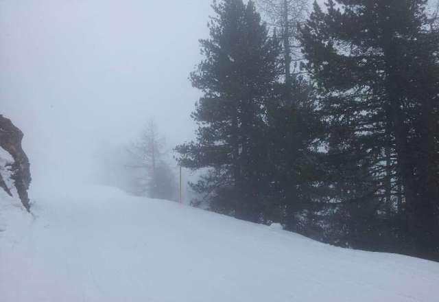 snowy in zermatt