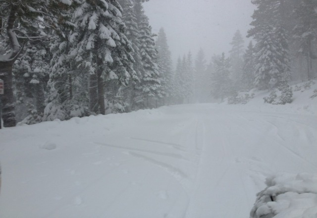 white out today but some great pow pow