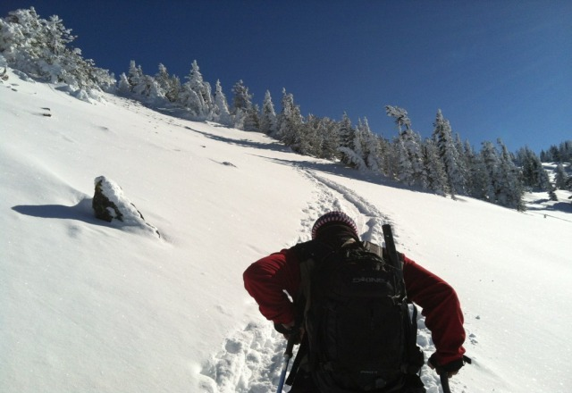 heading to the backcountry!!