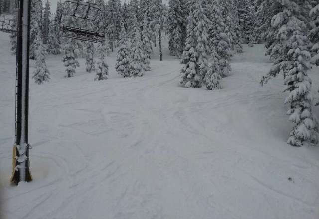 1/26 amazing day 4 in of powder over hard PAC