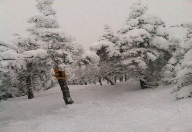 unreal conditions in the glades