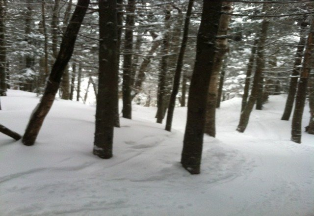 Plenty of snow in the woods. Today was the real powder day, but Wednesday - the weekend will be great too.