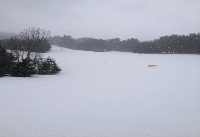 here now snow falling the best conditions this season