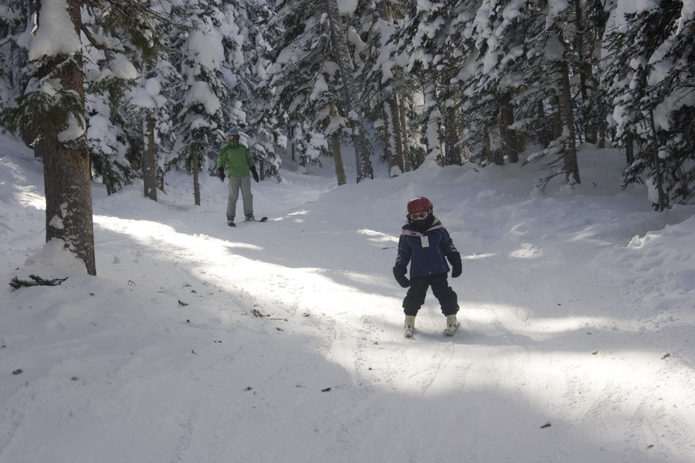 A skier comes out of the trees in Monarch Mountain, Colorado