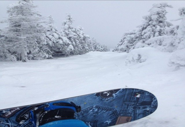 rode past 3 days...today was dead compared to the weekend. still lots of pow in the trees if you know where to find it.