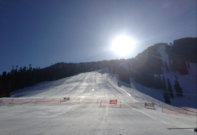 Awesome bluebird day