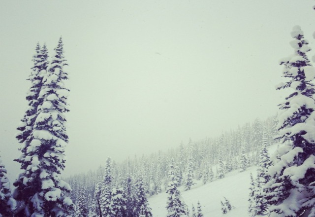 bring on the pow!