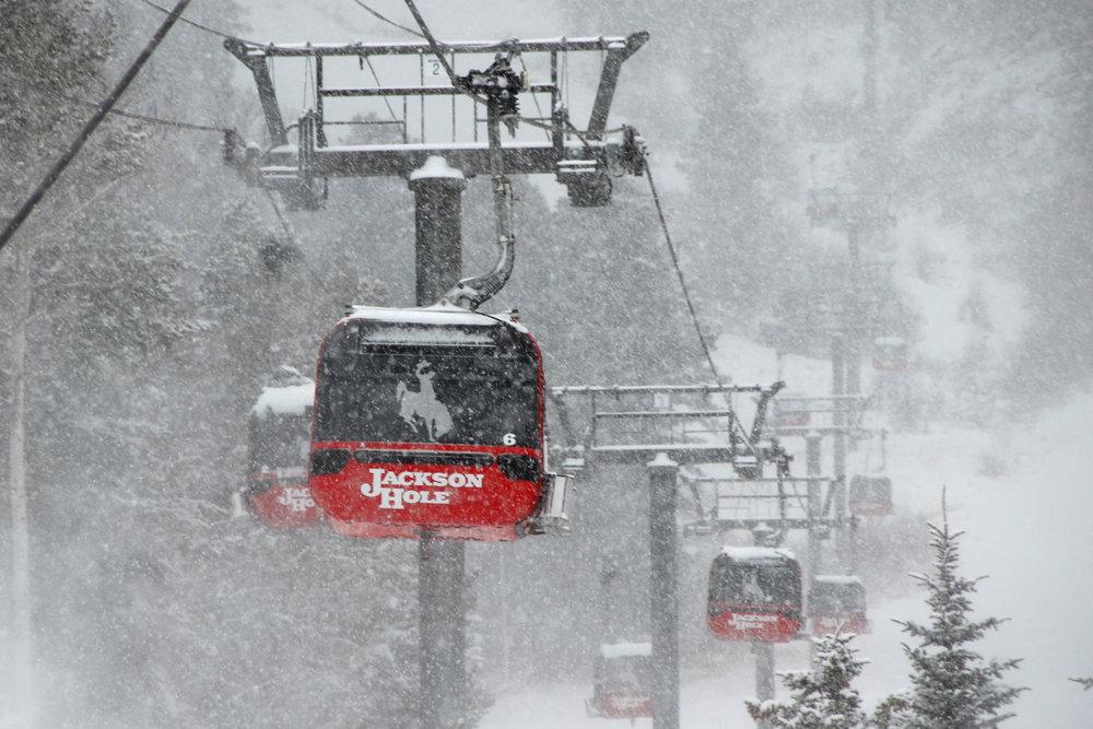 Snow falls heavily as the gondola takes Steep and Deep students to their next test. Photo Credit- Tristan Greszko/Jackson Hole Mountain Resort