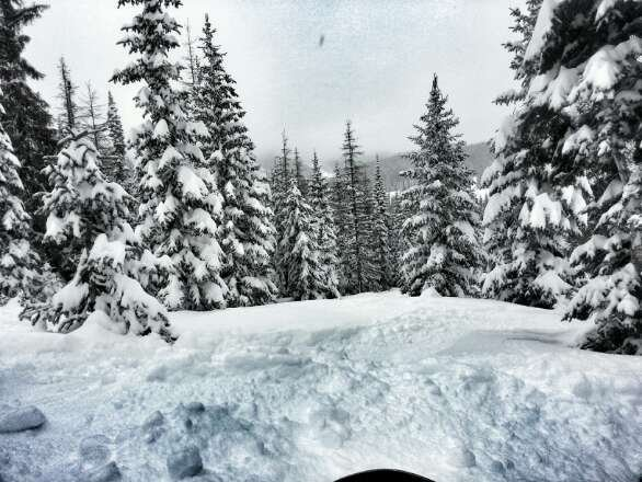 this past weekend was a dream. waist deep pow pow.