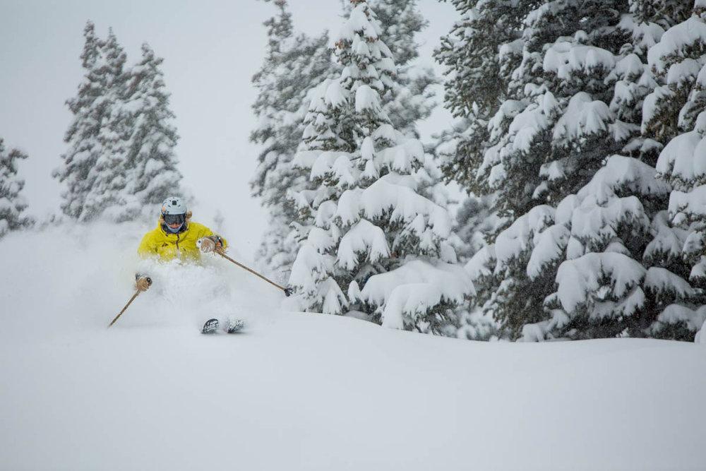 Skier enjoying the fresh powder in Aspen, early December 2013. - ©Jeremy Swanson