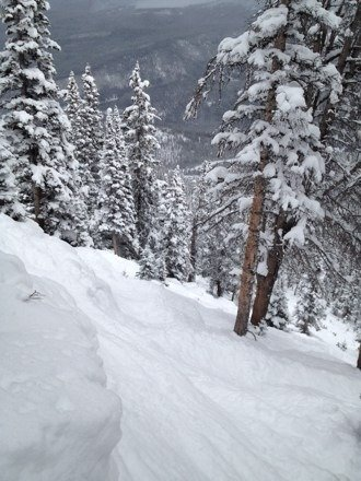Upper Pine Cliffs on MJ Sunday afternoon.  Great tree skiing everywhere