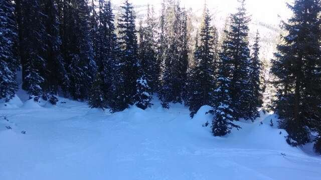 first day today and skied off Alberta all day and found a lot of really good snow and runs today.  waterfall area was sweet and areas off tsunami had fun pockets of soft pow