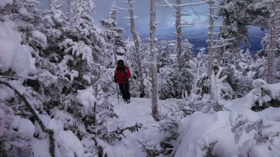 all snow blown off the trails. Mt Ellen should have been closed. top of Lincoln was OK. picture here (off trail)