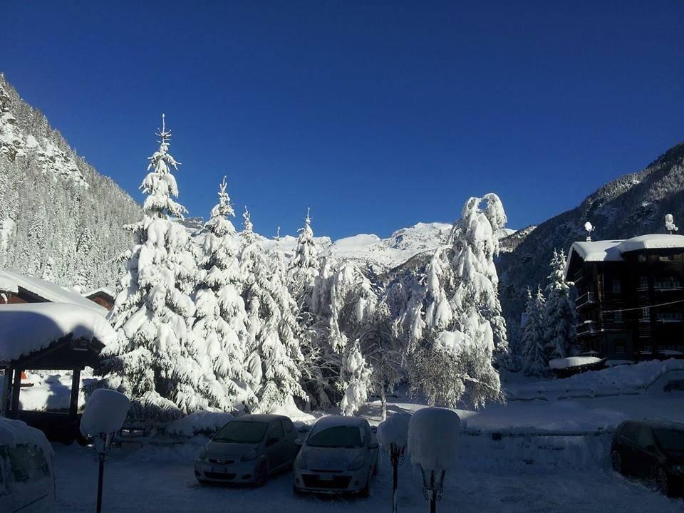 Champoluc - ©Monterosa Ski