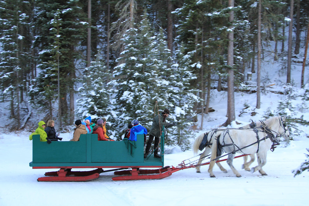 An old fashion sleigh rides leads to the North Fork cabin for dinner at Lone Mountain Ranch.