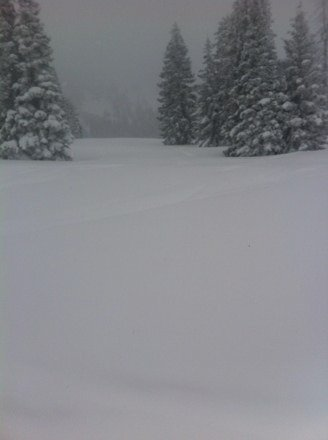 Storm King bliss today. Lollipop turns for miles in untouched pow. Gotta love the 'boat.