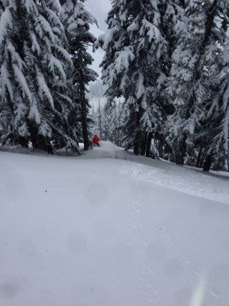 Good powder day snowing visibility good not cold no traffic