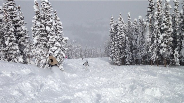 Pic from Feb 1.  Great powder day if you know where to look.
