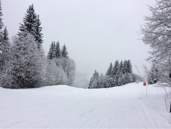 Cloudy today but really great fresh snow!