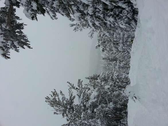 Snowed all day today (: super nice deep powder!!!
