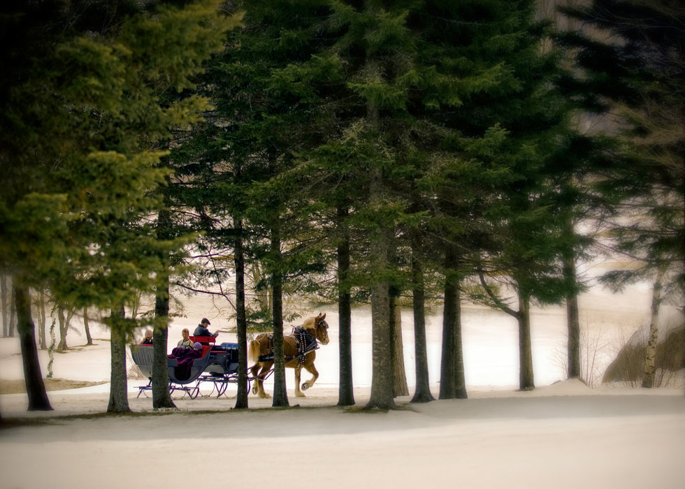 A sleigh ride in Bretton Woods, New Hampshire
