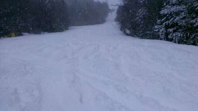 if you like powder, today is the day. skiing in waist deep snow. picture is of lower ballhooter