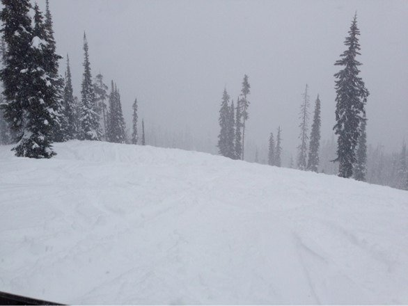 View from top of Jackpot. Snowed on and off all day. Typical family day busyness.