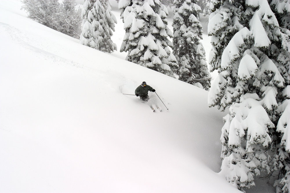 Skier floating through the powder at Mt. High.