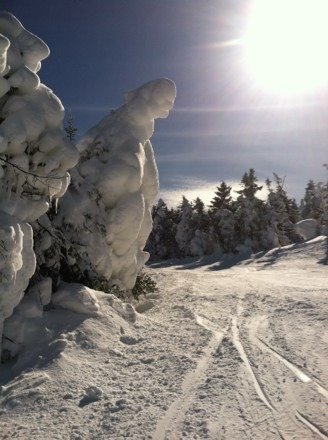 Great day today with lots of powder and the sun shining on the slope! I hope there will be more days like this!!!