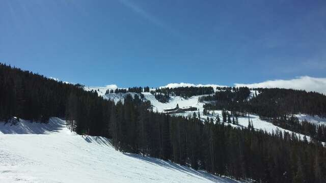 Vail was gnar today. Still pow in the  trees where others have not tracked.