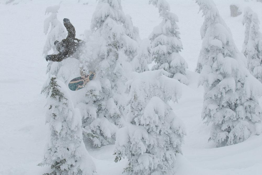 Snowboarder navigating through thick snow and trees