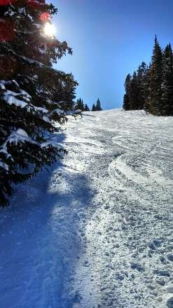 Wonderful, blue sky day on Wednesday! New snow made for great skiing.