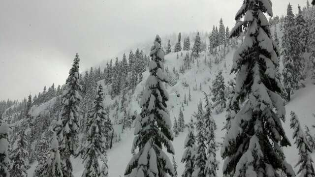 every line was a epic line. untracked cold smoke powder to the face
