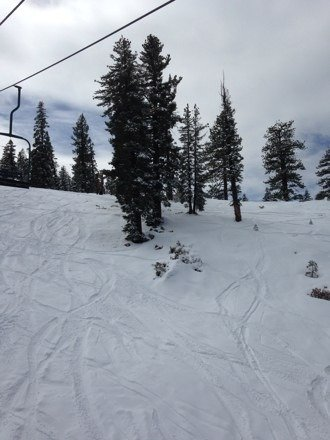 Best spring conditions of the season!