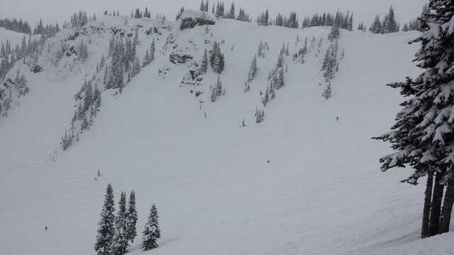 Lots of fresh tracks to be had. fun day