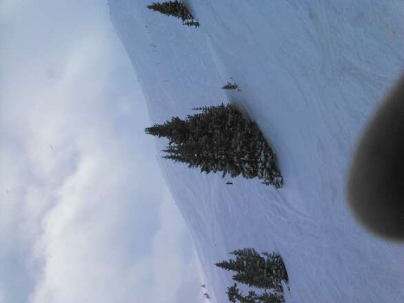 Great pow day @ Copper!!! Union bowl was knee deep. Hoping Tucker mnt. will be open tomorrow for some fresh pow. Love the tree skiing here alot of tight lines.