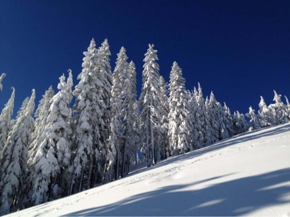 April 2: Another gorgeous day to hike for turns. Cool dry snow in AM, becoming sun-affected by the afternoon