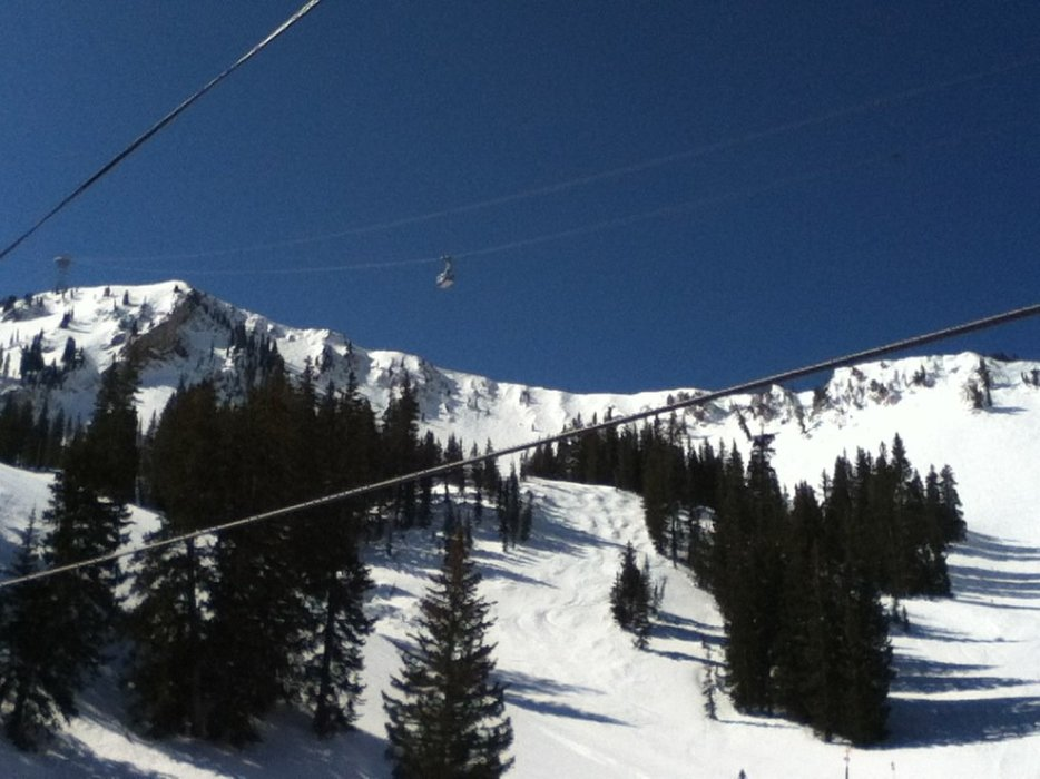Perfect bluebird day. Great coverage. Long may it last.