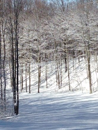 Saturday April 5, outstanding conditions, 100% open runs, power line glades and twilight zone fantastic. See u next year!